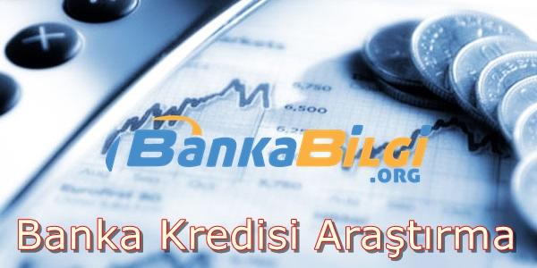 Banka Kredisi Araştırma
